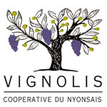 logo-vignolis-saint-do-formation